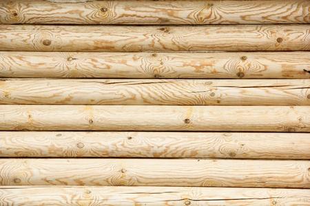 log wall of yellow pine photo
