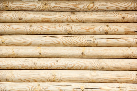 log wall of yellow pine