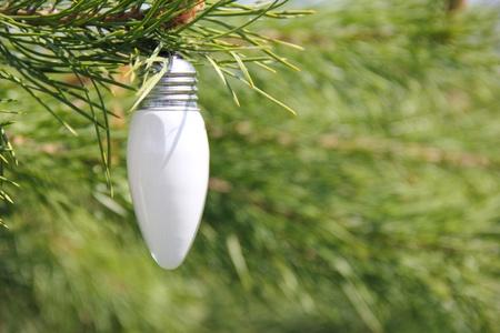 Ecological concept symbolizing the unity of nature and technology photo