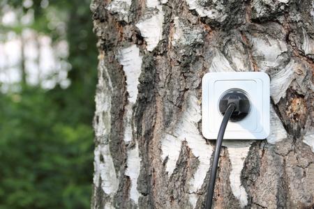ahorro energia: Concepto ecol�gico, que simboliza la energ�a renovable, bioenerg�a Foto de archivo