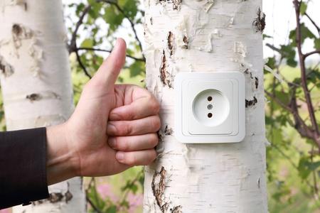 reprocessing: Ecological concept, symbolizing renewable energy, bio energy