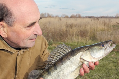 old fisherman and his catch - zander photo