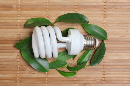concept, symbolizing the ecological compatibility of energy saving bulbs photo