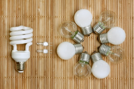 save electricity: concept, symbolizing the efficiency of energy saving bulbs