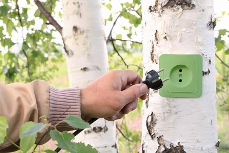 sustentabilidad: Concepto ecol�gico, que simboliza la energ�a renovable, la bioenerg�a Foto de archivo