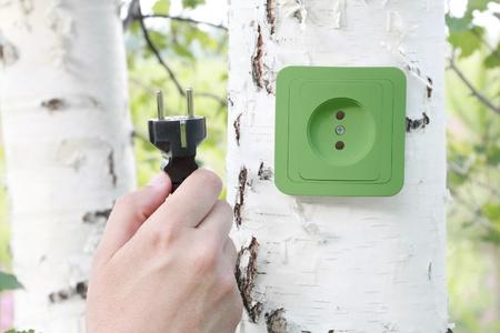 enchufe de luz: Concepto ecológico, que simboliza la energía renovable, la bioenergía Foto de archivo