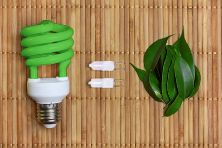 electric green: concept, symbolizing the ecological compatibility of energy saving bulbs