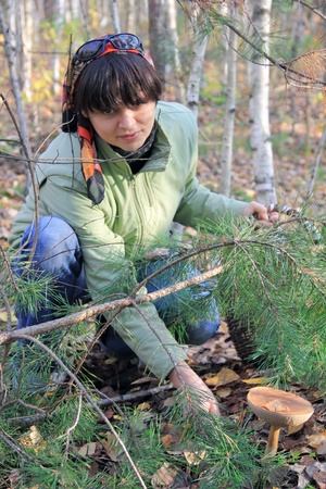 off cuts: Woman cuts off boletus mushroom in the forest