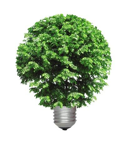 ahorro energia: concepto ecol�gico, que simboliza la energ�a renovable, la bioenerg�a