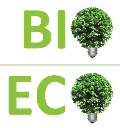 energy conservation: concept, symbolizing alternative green energy, bio and eco