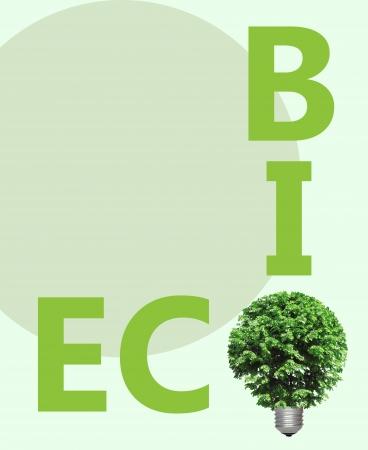 energy bio: concept, symbolizing alternative green energy, bio and eco