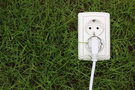 ahorro energia: concepto ecológico, que simboliza la energía renovable, la bioenergía