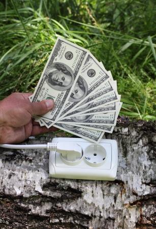 concepto ecol�gico, que simboliza la inversi�n en energ�a verde con toma de corriente de un �rbol Foto de archivo - 14398755