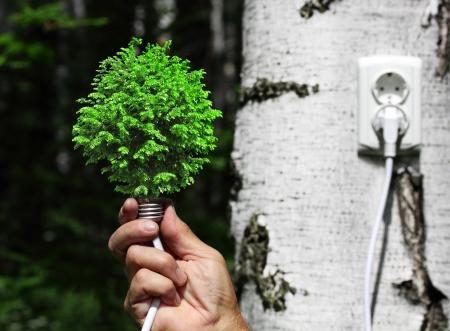ahorro energetico: concepto ecol�gico, que simboliza la energ�a renovable, la bioenerg�a