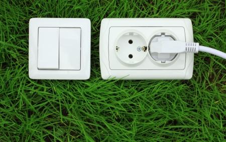 ecological concept, symbolizing renewable energy, bio energy photo