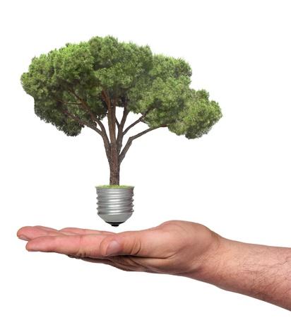 energy bio: ecological concept, symbolizing renewable energy, bio energy