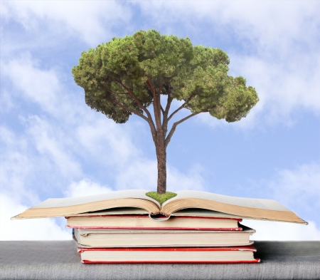 obtained: tree on the books symbolizing the germs of the knowledge obtained from books
