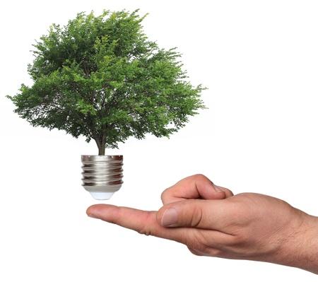 ecological concept, symbolizing renewable energy, bio energy Stock Photo - 16536924