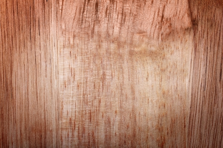 elm: broun wood texture for background  Stock Photo