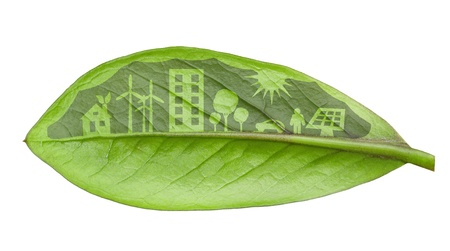 Green city concept, cut the leaves of plants, isolated over white photo