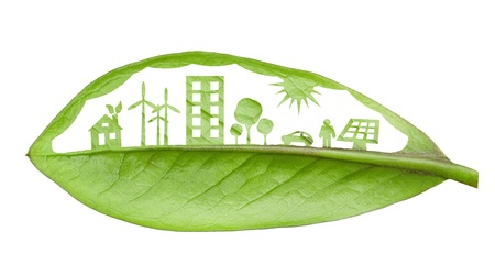 Concepto de ciudad verde, corte las hojas de las plantas, aislado más de blanco