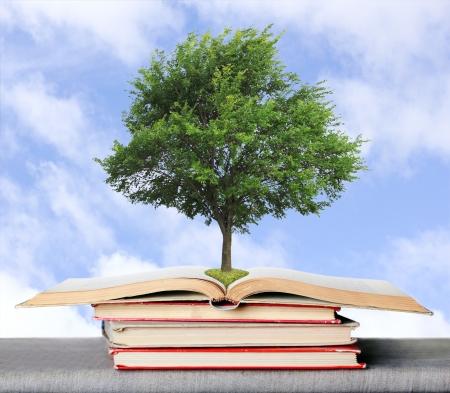 educazione ambientale: ?oncept, a simboleggiare i germi della conoscenza ottenuta dai libri ?lso pu� essere concetto di eco