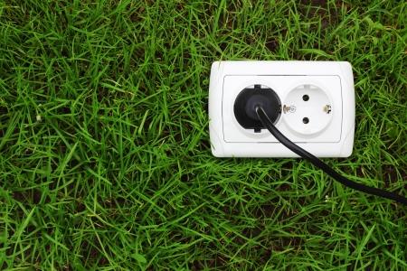switch plug: ecological concept, symbolizing renewable energy, bio energy