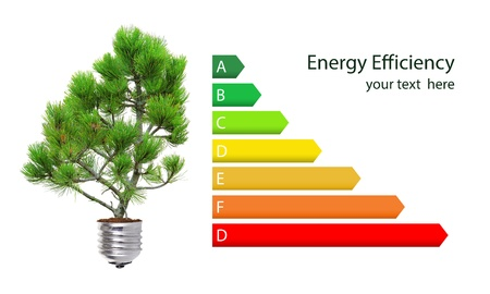 Energy efficiency rating and green lightbulb concept isolated over white photo