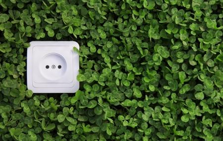ecologisch concept, het symbool van hernieuwbare energie, bio-energie Stockfoto