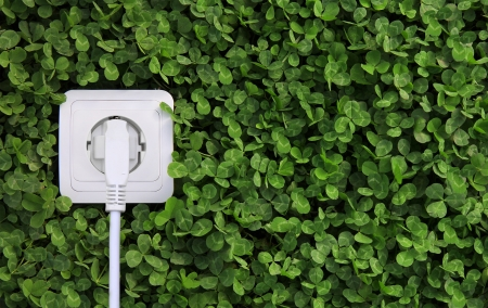 save electricity: ecological concept, symbolizing renewable energy, bio energy