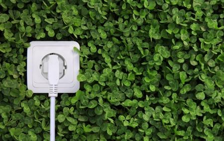 KOLogisches Konzept, als Symbol für erneuerbare Energien, Bio-Energie Standard-Bild - 24686942