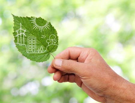 sustentabilidad: mano que sostiene el concepto verde de la ciudad, cortar las hojas de las plantas