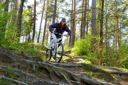 mountainbike: Bike riding - woman on bike in forest Stock Photo