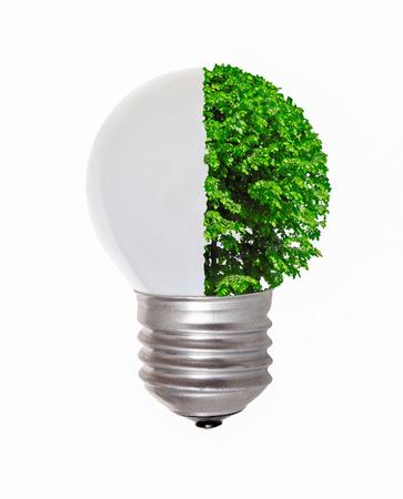 concetto ecologico, che simboleggia le energie rinnovabili, l'energia bio