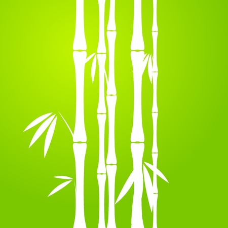 Stems of bamboo in sketch style on dark background