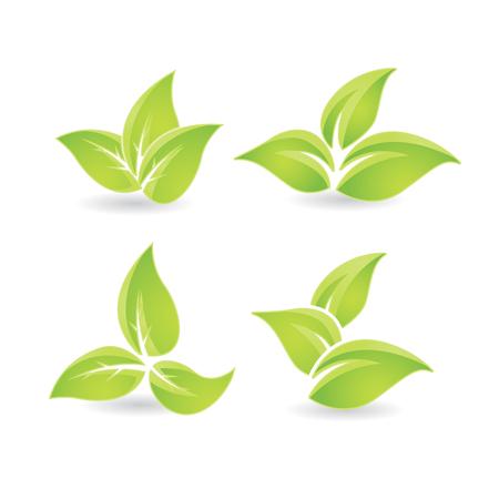 Set of green leaves - bio emblem Çizim