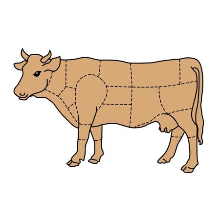 Vaca de dibujos animados - diagrama de carne de ganado
