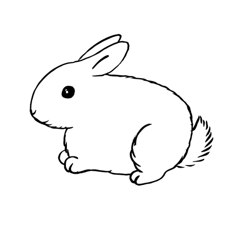 Bunny outline - furry white hare Çizim