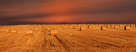 Hay bales and twilight sky photo