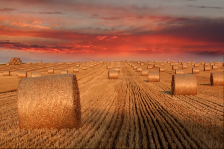 Hay bales and twilight sky