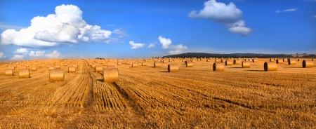 Hay bales and blue sky - panoramic view