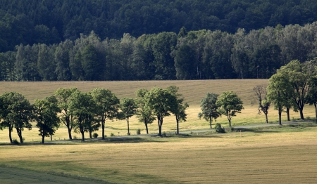 zoning: Beautiful landscape with fields and hills  Stock Photo