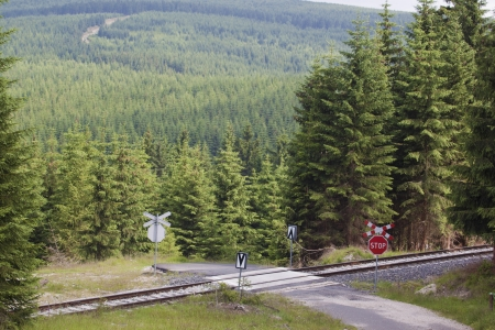 Railroad crossing in the mountains with stop sign Stock Photo - 16656453