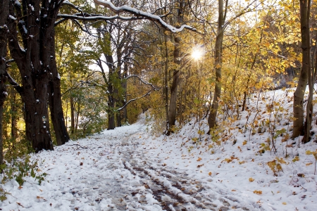 Two seasons - winter and autumn scene in the park Stock Photo - 16695487