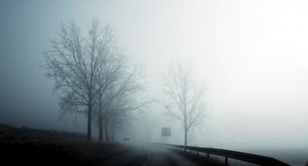 霧深い冬の朝