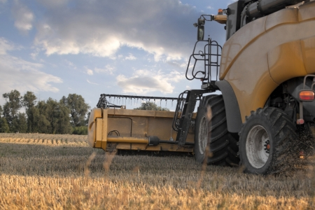 combine harvester on a wheat field Stock Photo - 21196938