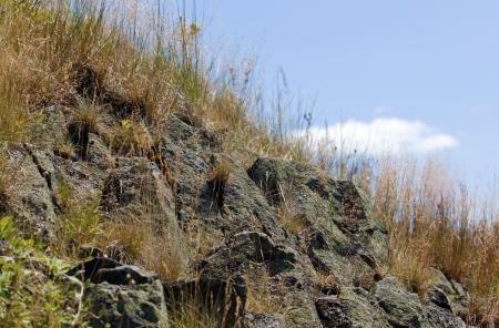 volcanic rock: Volcanic rock Stock Photo
