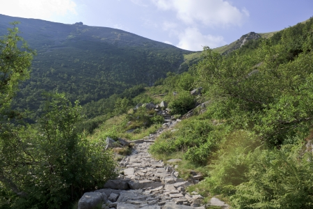 Mountain trail in Karkonosze