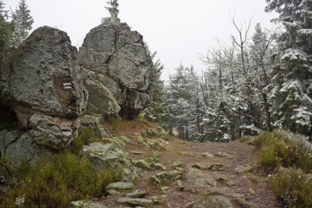 Two seasons - winter and autumn scene