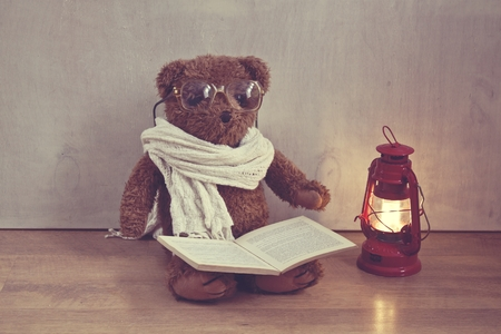 Retro Teddy Bear photo